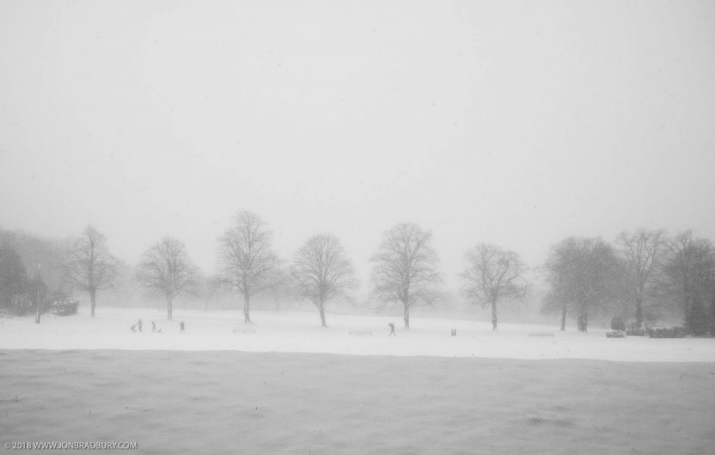 Black & Snow